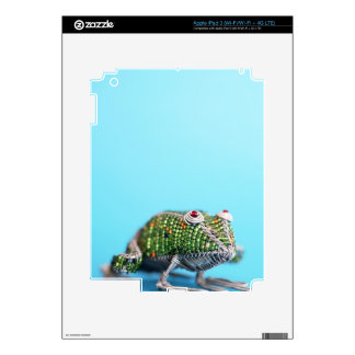 Grahamstown, Eastern Cape Province, South Africa Skin For iPad 3