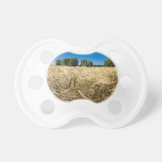 Grain field with trees and blue sky BooginHead pacifier