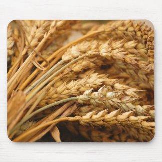 Grain - Grain Mouse Pad