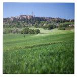 grainfield defocused con en el pienza, Toscana, Azulejo Cuadrado Grande