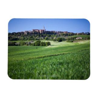 grainfield defocused con en el pienza, Toscana, Imán
