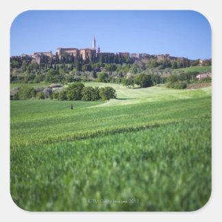 grainfield defocused con en el pienza Toscana Colcomanias Cuadradases