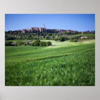 grainfield defocused con en el pienza, Toscana, Póster