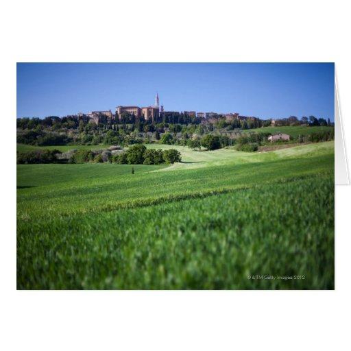 grainfield defocused con en el pienza, Toscana, Tarjeta De Felicitación