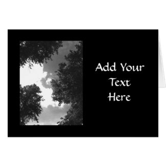 Grainy Black and White image of Trees and Sky. Card