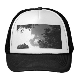 Grainy Black and White image of Trees and Sky Trucker Hats