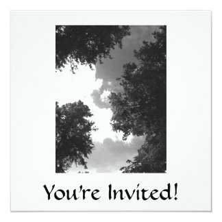 Grainy Black and White image of Trees and Sky. 5.25x5.25 Square Paper Invitation Card