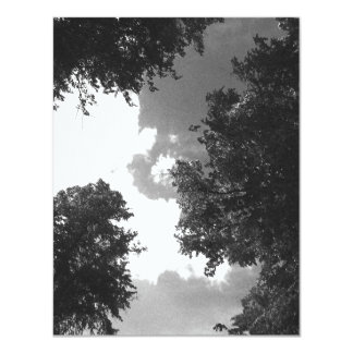 Grainy Black and White image of Trees and Sky. 4.25x5.5 Paper Invitation Card