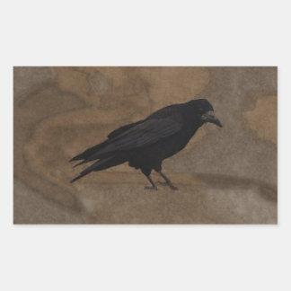 Grajo negro Corvid británico y fondo rústico Pegatina Rectangular