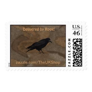 Grajo negro Corvid británico y fondo rústico