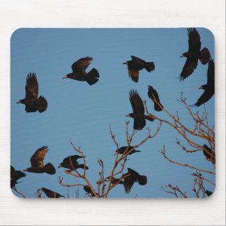 Grajos que vuelan de árbol tapetes de raton