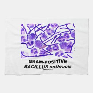 Gram-Positive Bacillus anthracis (Bacteria) Kitchen Towel