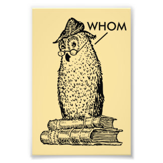 Grammar Owl Says Whom Photo Print