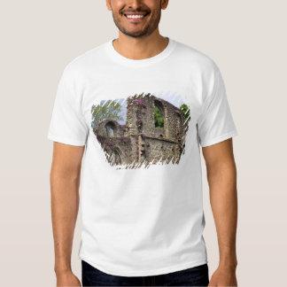 Gran Bretaña, Reino Unido, Escocia. Ruinas 2 Remeras
