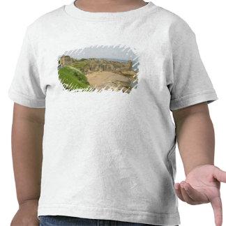 Gran Bretaña, Reino Unido, Escocia, St. Camisetas