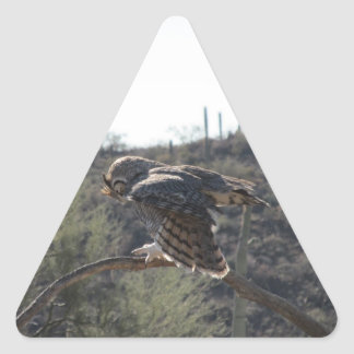 Gran búho de cuernos pegatina triangular