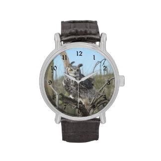 Gran búho de cuernos relojes de pulsera