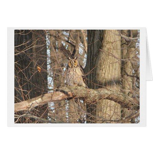 Gran búho de cuernos tarjeta pequeña