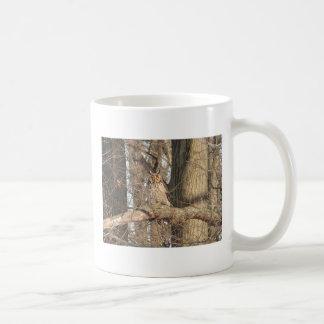 Gran búho de cuernos taza