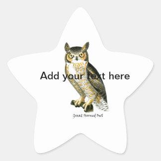 Gran búho del cuerno pegatinas forma de estrella personalizadas