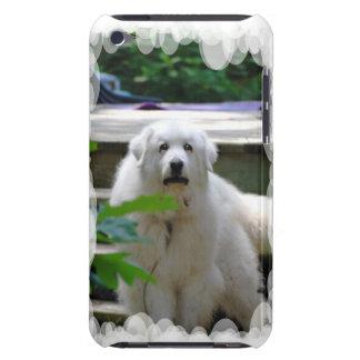 Gran caja blanca de iTouch del perro de los Pirine iPod Touch Carcasas