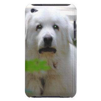 Gran caja blanca de iTouch del perro de los Pirine iPod Case-Mate Cobertura