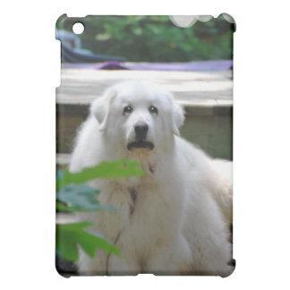 Gran caja blanca del iPad del perro de los Pirineo
