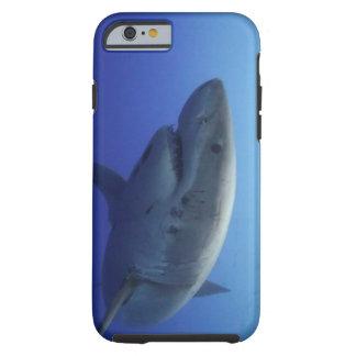 Gran caja del iPhone 6 del tiburón blanco Funda Resistente iPhone 6