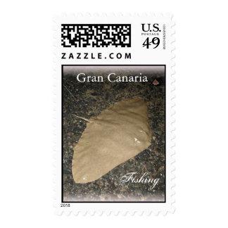 Gran Canaria Fishing 02 Postage