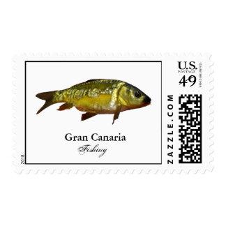 Gran Canaria Fishing 03 Postage