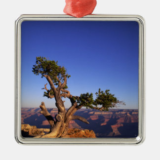 Gran Cañón, Arizona, los E.E.U.U. Ornamento De Navidad