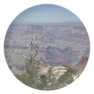 Gran Cañón Arizona Plato De Cena