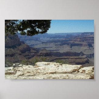 Gran Cañón Arizona Póster
