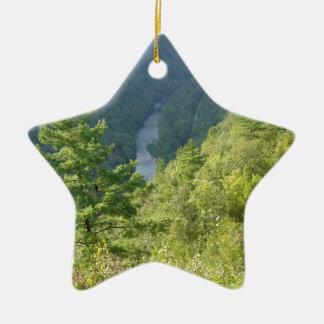 Gran Cañón de Pennsylvania por la avenida Hurley Ornamento Para Arbol De Navidad