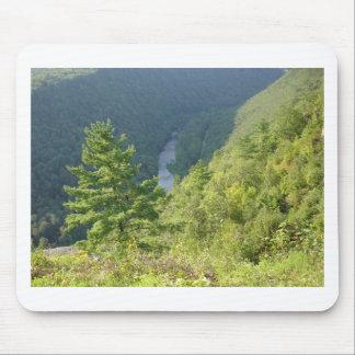 Gran Cañón de Pennsylvania por la avenida Hurley Alfombrillas De Raton