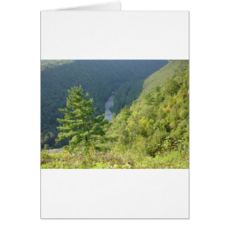 Gran Cañón de Pennsylvania por la avenida Hurley Tarjetas
