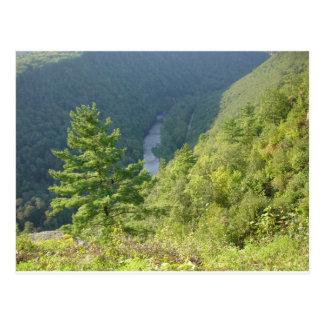 Gran Cañón de Pennsylvania por la avenida Hurley Tarjetas Postales