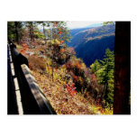 Gran Cañón de Pennsylvania - punto de Colton Tarjetas Postales