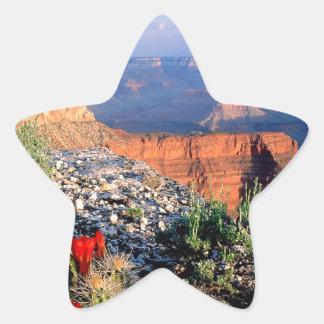 Gran Cañón del cactus de la taza de clarete del Pegatina En Forma De Estrella