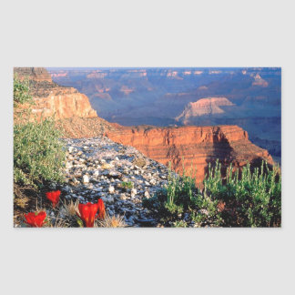 Gran Cañón del cactus de la taza de clarete del Pegatina Rectangular
