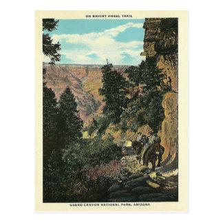 Gran Cañón del vintage Tarjeta Postal