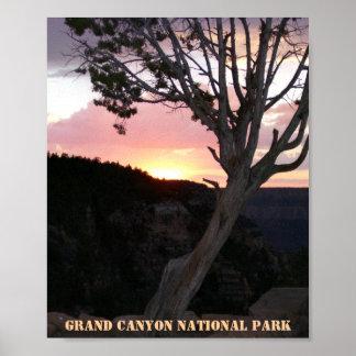 Gran Cañón en la puesta del sol con oro rosado y Póster