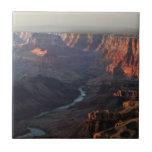 Gran Cañón y el río Colorado en Arizona Azulejo Cuadrado Pequeño