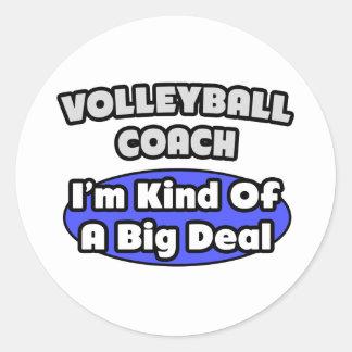 Gran cosa del coche del voleibol… pegatina redonda