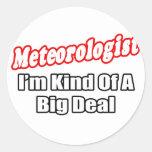 Gran cosa del meteorólogo… pegatinas redondas