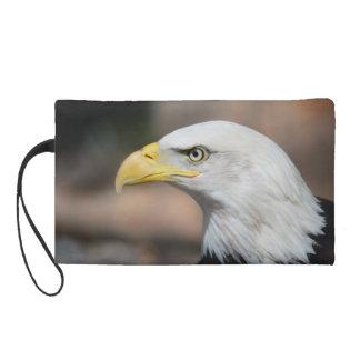 Gran Eagle calvo