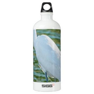 Gran Egret 1