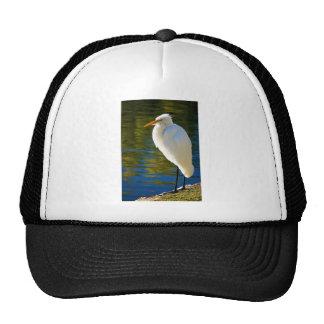 Gran Egret 2 Gorro