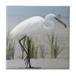 Gran Egret Azulejo Cuadrado Pequeño