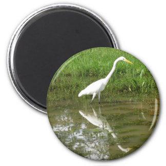 Gran Egret blanco Imán Redondo 5 Cm
